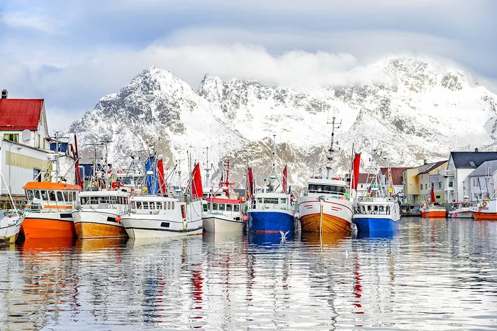 Norsk tran fra Lofoten